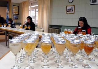 PROAPI: 7º concurso nacional de mieles
