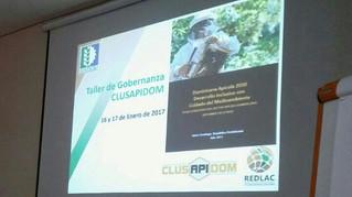 Taller de gobernanza del Cluster Apícola Dominicano