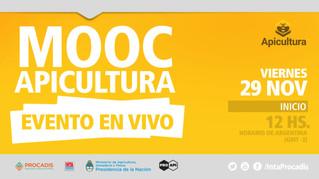 MOOC Apicultura (en vivo)