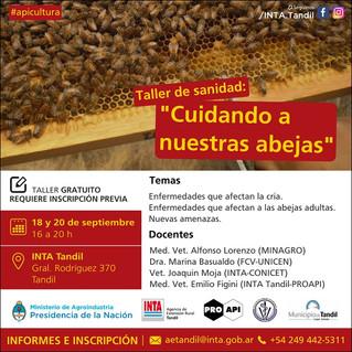 Taller apícola: Cuidando las abejas