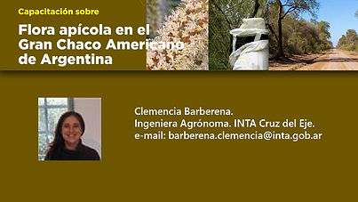 7- Tarjeta Clemencia Barberena.jpg