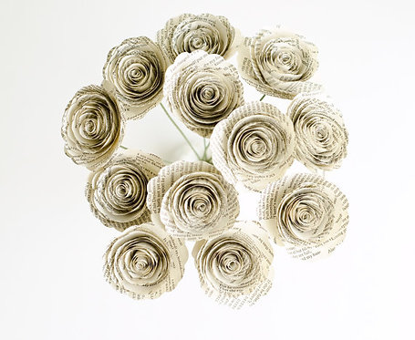 Book Roses - One Dozen in Ivory