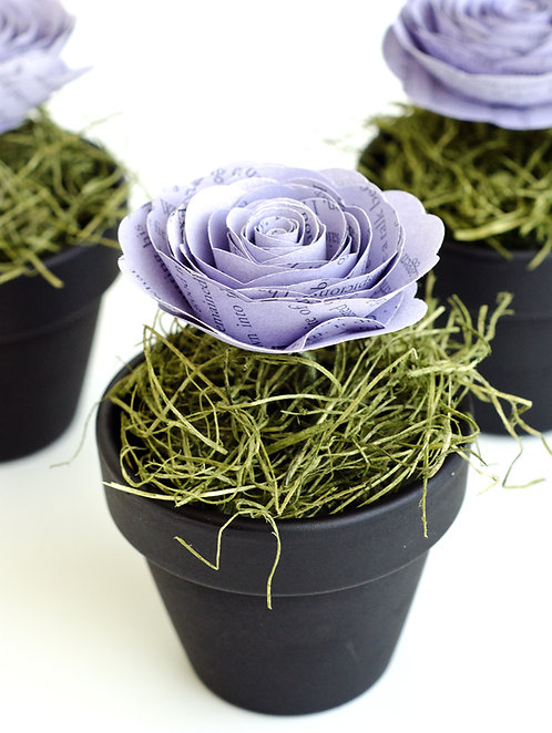 Rose in Chalkboard Flower Pot with Customization