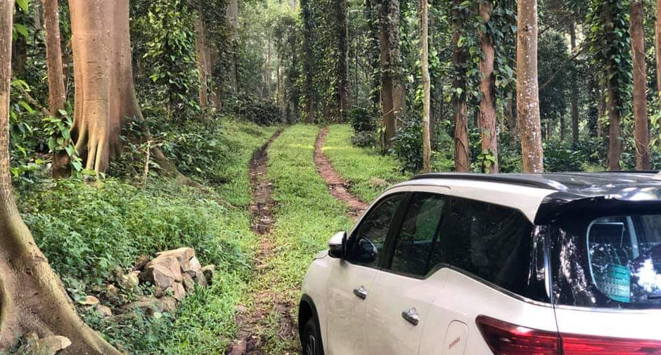 All roads lead to Nature