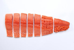 salmon_fillet.jpg