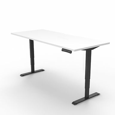 Move Sit-to-Stand Desk