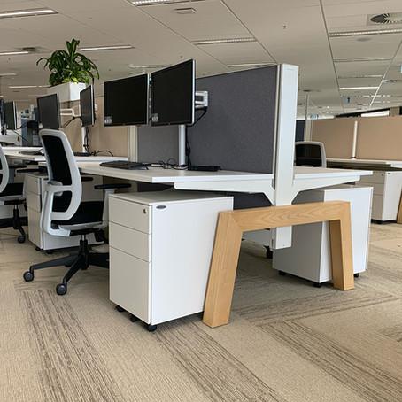 inner city office sanctuary