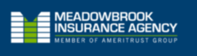 Meadowbrook Insurance