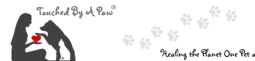 Touched by a Paw