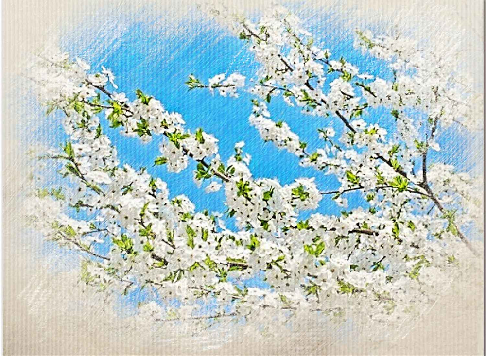 Cherry Plum, Bach Flower Remedy, Fear of mind giving away