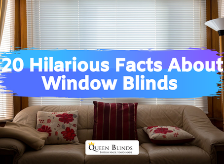 20 Hilarious Facts About Window Blinds You Probably Never Heard Before