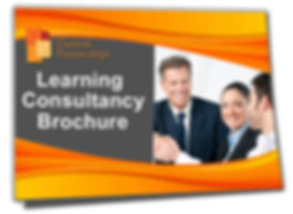 Learning Consultancy