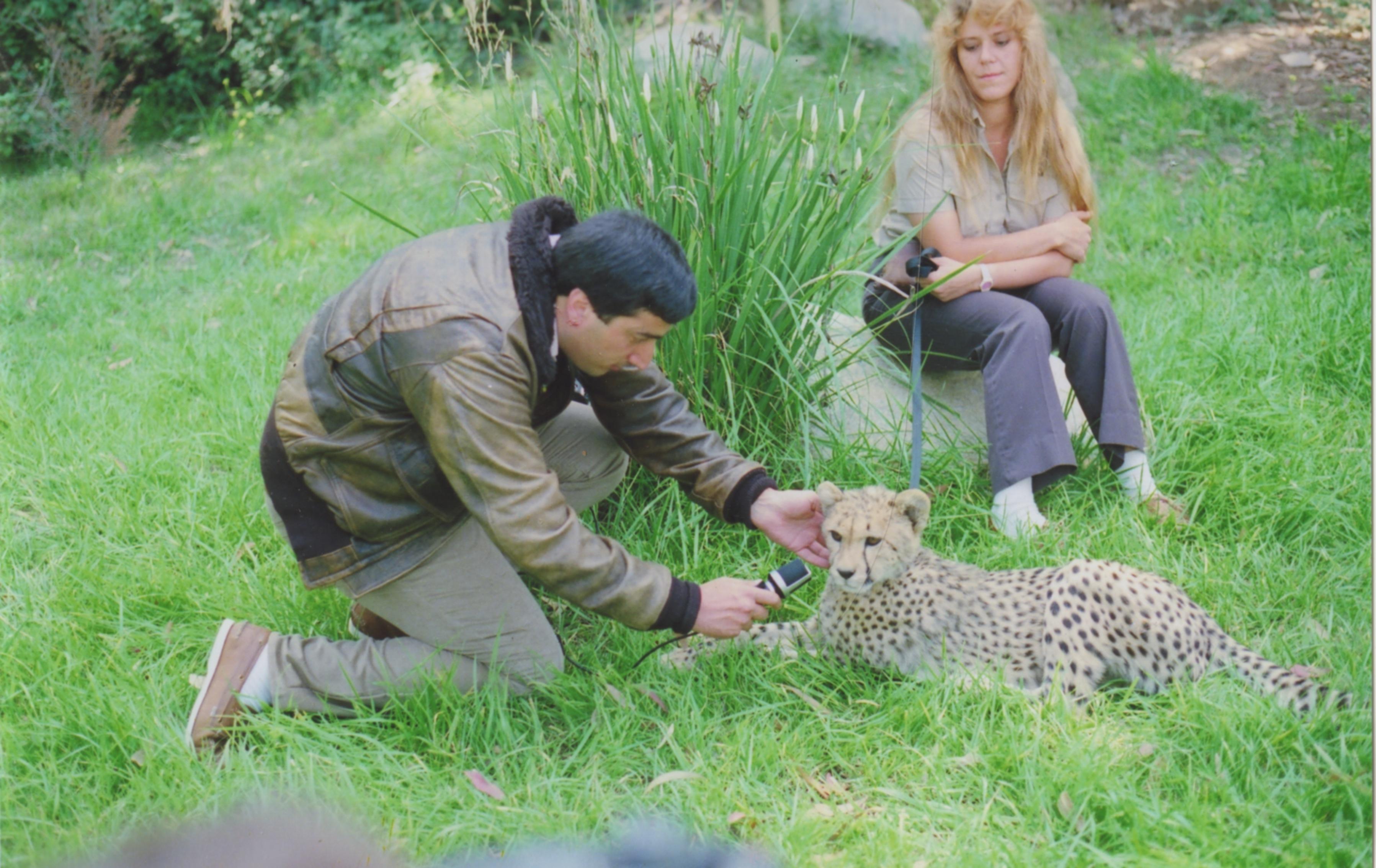 Elliott & Cheetah