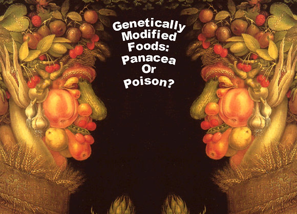 """GENETICALLY MODIFIED FOOD: POISON OR PANACEA?"""