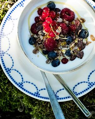 Yoghurt geitenmelk geitenyoghurt granola muesli fruit