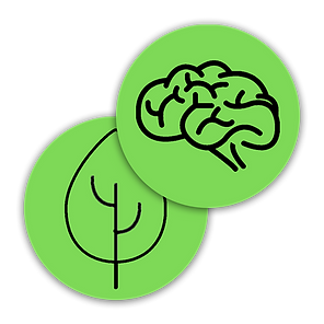 sukoon logo art