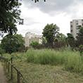 Label_Gestion_Ecologique_-_square_Charle