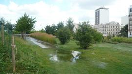 Label Gestion Ecologique - Jardin d Eole
