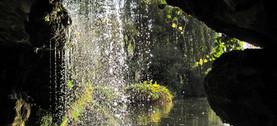 Label Gestion Ecologique - Bagatelle eau