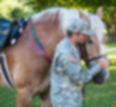 Veteran with horse in Equine Assisted Therapy for PTSD