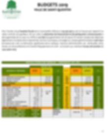 Avis - budget 2019-1.jpg