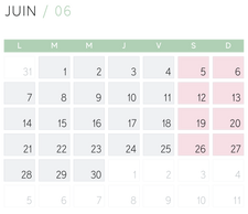 Calendrier_2021-02.png