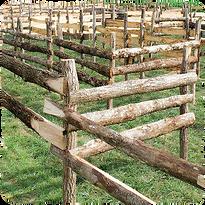 Laby'bois - Labyrinthe en bois - Sortie nature à Romagne