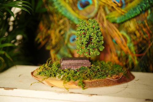 Coffin Under Tree on Wood