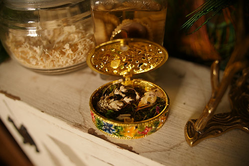 Sparrow Skull with Mini Moth in a Vintage Jewelry Box