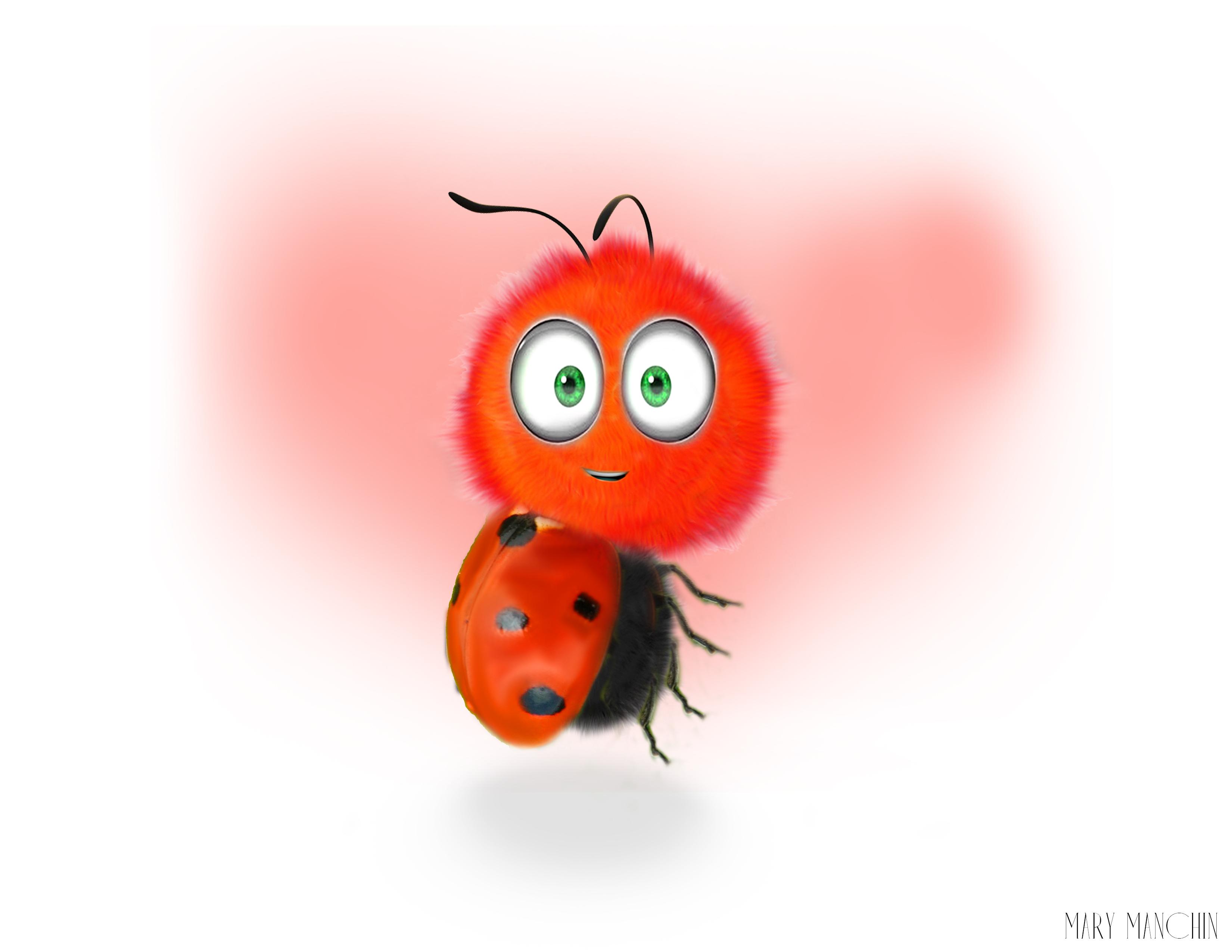 ladybug2