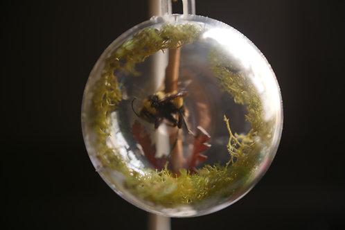 Small Bee Globe