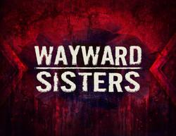 Wayward Sisters Look Book