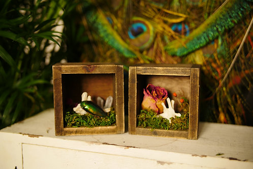 Wooden Shadow Boxes