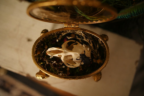 Oval Vintage Jewelry Box with Cherub Legs with Muskrat Skull