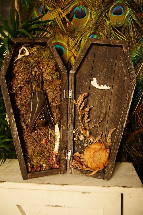 Bat Coffin