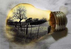 Mary_Manchin_lightbulb