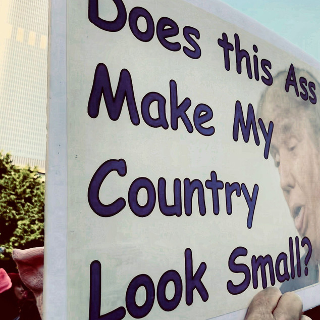ArtistGinaM__Small country Large Ass