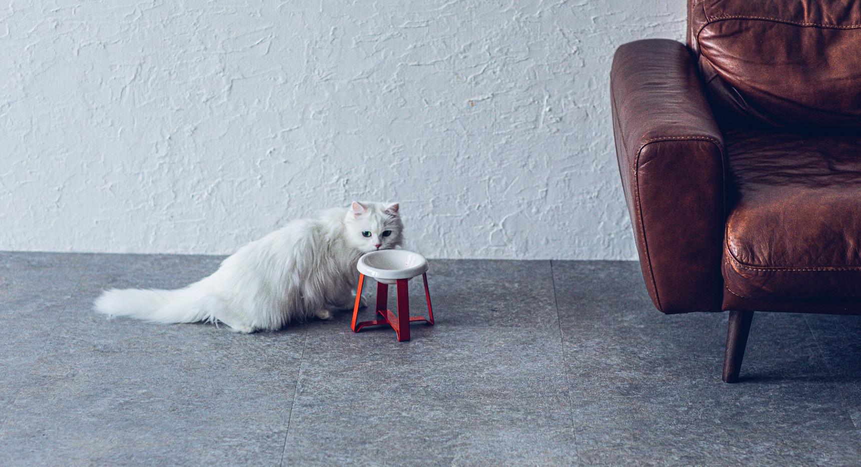 サイズ(S tall):W 132 x D 132 x H 137 (mm)  素材:ボウル(ステンレスまたは陶器) スタンド(ステンレス) 塗装:パウダーコーティング 重量:約560g ※組合せする器の種類により増減あり