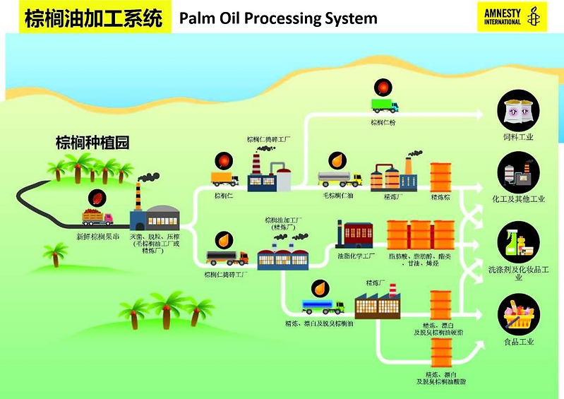 palm oil.png