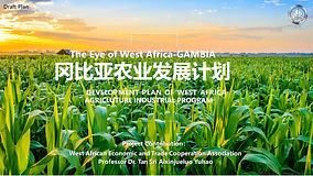 8.西非农业发展计划DEVELOPMENT PLAN OF WEST AFRIC