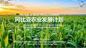 8.西非农业发展计划DEVELOPMENT PLAN OF WEST AFRIC