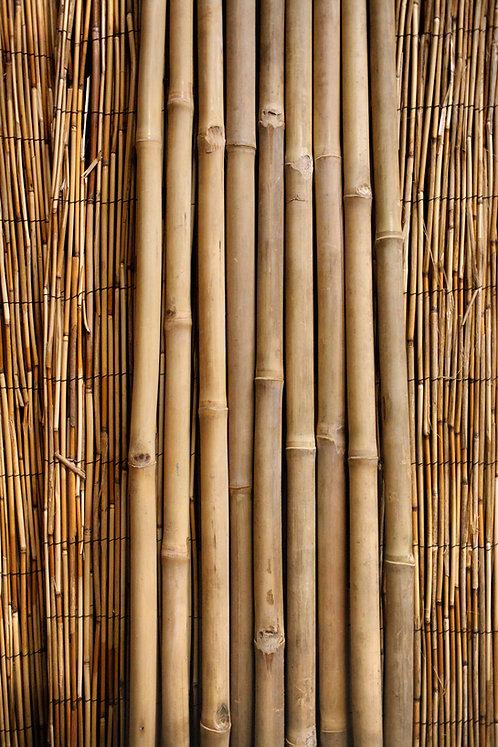 "1"" Diameter Tam Vong Pole"