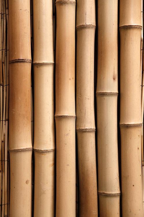 Moso Timbers