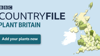 BBC Countryfile Plant Britain - A discussion on establishing trees effectively.