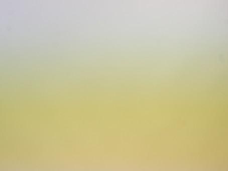 写真が黄色やシマシマに!? 『フリッカー現象』と対策をご紹介!