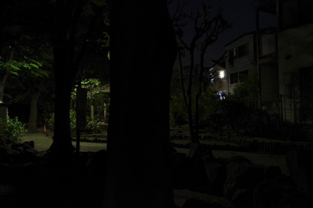 夜間の撮影 スピードライト 成功例