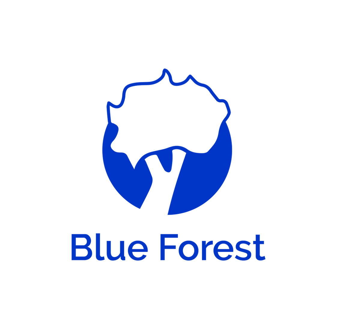 Blue forest.png