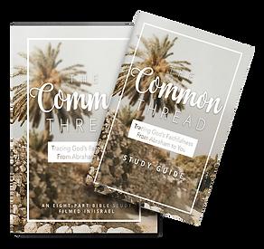 dvd-studyguide-bundle-copy-3.png