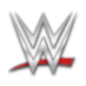 wwe-silver-logo-png-4.png
