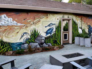 Upgrading your outdoor setting with a Residential Mural in the San Francisco Bay Area